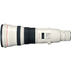 Canon EF 800mm f/5.6L IS USM Lens