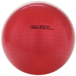 Gofit 55cm Exercise Ball With