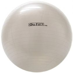 Gofit 65cm Exercise Ball With